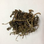 atropa belladonna 2