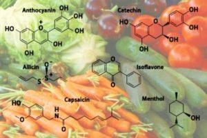 secondary metabolites