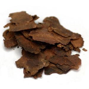 fo-ti traditional chinese medicine longevity herb